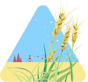 秋の麦畑のサイクリングのイラスト素材 [FYI04906725]