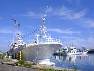 漁船の写真素材 [FYI04907068]