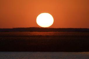草原に沈む夕陽の写真素材 [FYI04907099]