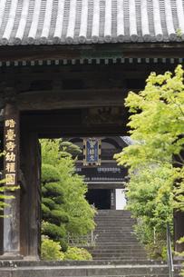 晧台寺の総門と大仏殿の写真素材 [FYI04907617]