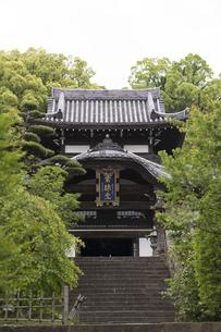 晧台寺の大仏殿の写真素材 [FYI04907618]