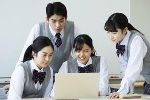 グループ学習をする高校生たちの写真素材 [FYI04907770]