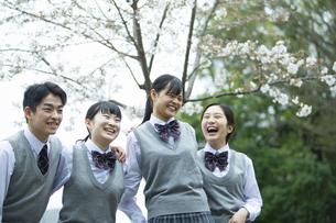 友達と笑顔の高校生たちの写真素材 [FYI04907795]