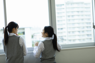 友達と話す女子高生の写真素材 [FYI04907802]