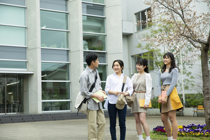 キャンパスで友達と談笑する大学生たちの写真素材 [FYI04907824]