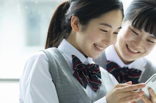 友達とスマートフォンを見ている女子高生の写真素材 [FYI04907982]