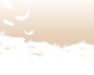 羽根が舞う背景のイラスト素材 [FYI04908137]