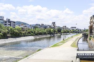 新緑の並木を見る鴨川風景の写真素材 [FYI04908324]