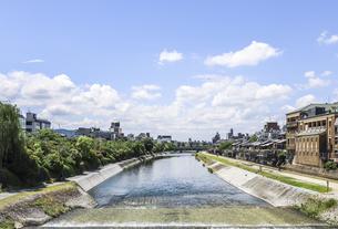 三条大橋より四条大橋を見る初夏の鴨川風景の写真素材 [FYI04908325]