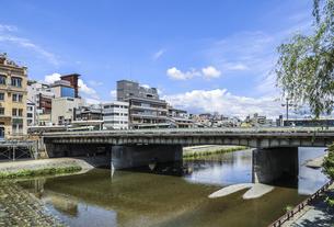 シダレヤナギの新緑を見る四条大橋の写真素材 [FYI04908334]