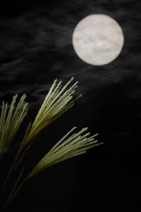 夜空の満月とススキの写真素材 [FYI04908346]
