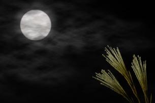 夜空の満月とススキの写真素材 [FYI04908348]