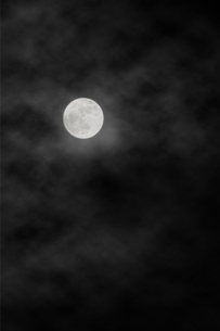 雲で霞む満月の写真素材 [FYI04908351]
