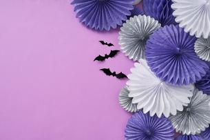 ピンクバックの壁飾りの写真素材 [FYI04908663]