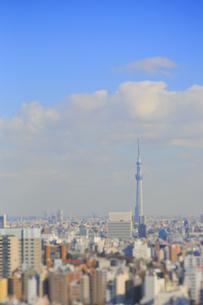 スカイツリーと東京都心のジオラマ風景の写真素材 [FYI04908953]