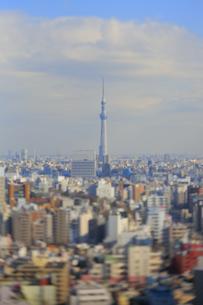 スカイツリーと東京都心のジオラマ風景の写真素材 [FYI04908954]