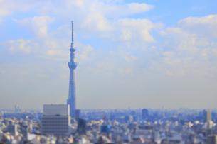 スカイツリーと東京都心のジオラマ風景の写真素材 [FYI04908955]