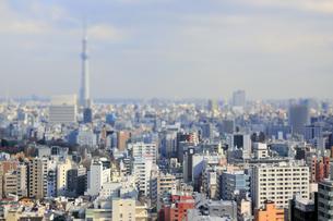 スカイツリーと東京都心のジオラマ風景の写真素材 [FYI04908956]