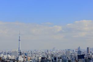 スカイツリーと東京都心のジオラマ風景の写真素材 [FYI04908957]