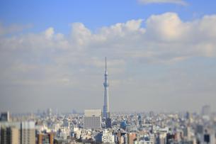 スカイツリーと東京都心のジオラマ風景の写真素材 [FYI04908959]