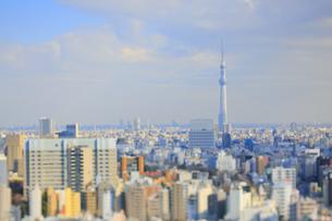 スカイツリーと東京都心のジオラマ風景の写真素材 [FYI04908960]