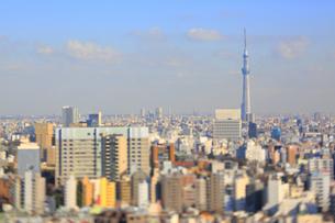 スカイツリーと東京都心のジオラマ風景の写真素材 [FYI04908961]