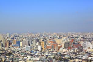 東京都心のジオラマ風景の写真素材 [FYI04908969]