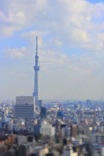スカイツリーと東京都心のジオラマ風景の写真素材 [FYI04908982]
