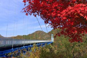 竜神大吊橋の紅葉の写真素材 [FYI04909581]