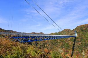 竜神大吊橋の紅葉の写真素材 [FYI04909583]