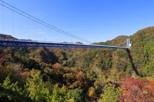 竜神大吊橋の紅葉の写真素材 [FYI04909584]