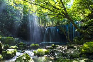 熊本県 鍋ヶ滝の写真素材 [FYI04909725]