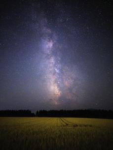 天の川と麦畑の写真素材 [FYI04909911]