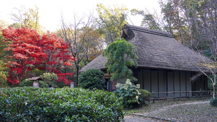 旧荻野家住宅、薬師池公園の古民家と紅葉(東京都町田市)の写真素材 [FYI04910073]
