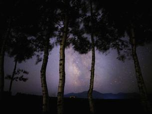 天の川と防風林の写真素材 [FYI04910188]
