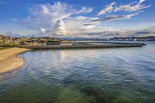 【夏】入道雲が浮かぶ海とビーチの風景 ドローン 空撮の写真素材 [FYI04910290]