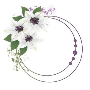 クレマチスの花のイラストフレームのイラスト素材 [FYI04910424]