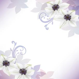 クレマチスの花のイラスト背景のイラスト素材 [FYI04910487]