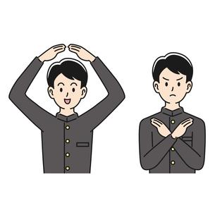 ○×のポーズをする男子高校生のイラスト素材 [FYI04910498]