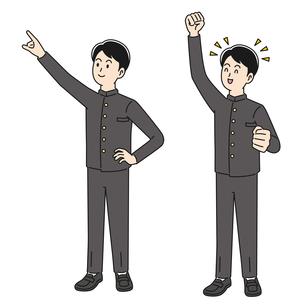 指さし&ガッツポーズをする男子高校生のイラスト素材 [FYI04910509]