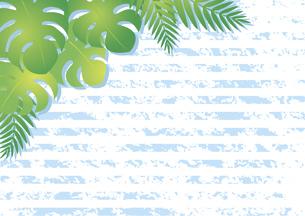 モンステラとヤシの葉の背景のイラスト素材 [FYI04910675]