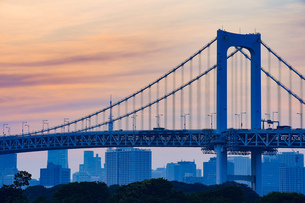 東京・レインボーブリッジと東京タワーの写真素材 [FYI04910778]