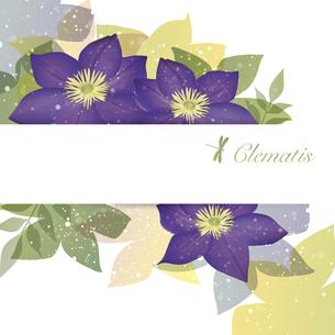 クレマチスの花のイラスト背景のイラスト素材 [FYI04910825]
