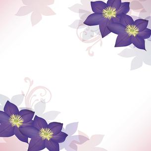 クレマチスの花のイラスト背景のイラスト素材 [FYI04910866]