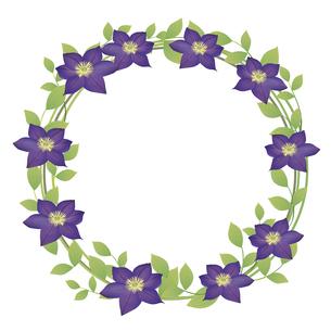 クレマチスの花のイラストフレームのイラスト素材 [FYI04910898]