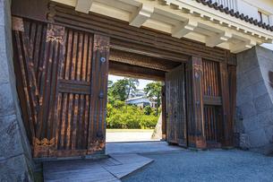 小田原城二の丸の正門 銅門と天守閣の写真素材 [FYI04910998]