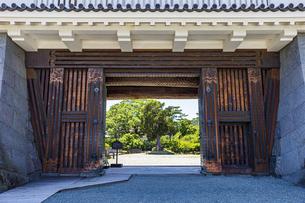 小田原城二の丸の正門 銅門の写真素材 [FYI04911004]