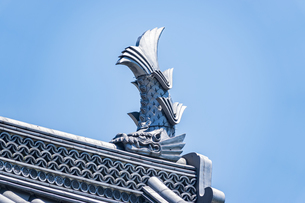 小田原城二の丸の正門 銅門の鯱の写真素材 [FYI04911012]