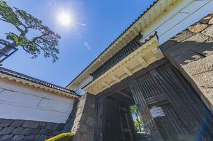 小田原城本丸の正門 常盤木門と松の木の写真素材 [FYI04911038]