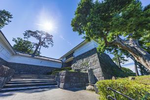 小田原城本丸の正門 常盤木門と松の木の写真素材 [FYI04911043]
